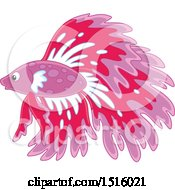 Clipart Of A Tropical Marine Fish Royalty Free Vector Illustration by Alex Bannykh