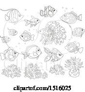 Clipart Of Black And White Tropical Marine Fish Anemone And Coral Royalty Free Vector Illustration by Alex Bannykh