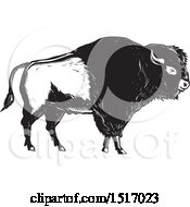 Clipart Of An American Bison In Black And White Woodcut Royalty Free Vector Illustration