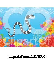Clipart Of A Sea Snake At A Coral Reef Royalty Free Vector Illustration by Alex Bannykh