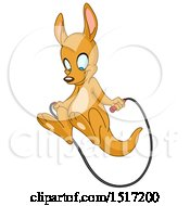 Cute Kangaroo Skipping Rope