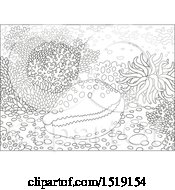 Clipart Of A Black And White Cowry Shell At A Coral Reef Royalty Free Vector Illustration