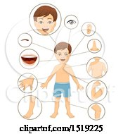 Clipart Of A Boy With Close Ups Of Body Parts Royalty Free Vector Illustration by BNP Design Studio