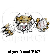 Clipart Of A Vicious Wildcat Mascot Shredding Through A Wall With A Baseball Royalty Free Vector Illustration by AtStockIllustration