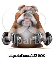 3d Bulldog Holding Dumbbells On A White Background