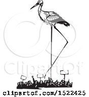 Clipart Of A Stork Bird Over A Crowd Of Protesters Black And White Woodcut Royalty Free Vector Illustration
