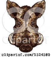 Clipart Of A Wild Boar Face In Sketched Style Royalty Free Vector Illustration