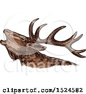 Clipart Of A Elk In Profile In Sketched Style Royalty Free Vector Illustration by Vector Tradition SM