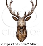 Clipart Of A Buck Deer Head In Sketched Style Royalty Free Vector Illustration