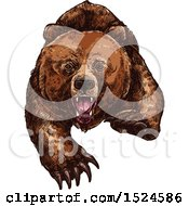 Clipart Of A Bear Attacking In Sketched Style Royalty Free Vector Illustration