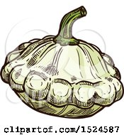 Clipart Of A Patty Pan Squash In Sketched Style Royalty Free Vector Illustration by Vector Tradition SM