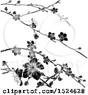 Clipart Of A Black And White Cherry Blossom Branches Background Royalty Free Vector Illustration by AtStockIllustration