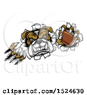 Clipart Of A Tough Bulldog Monster Shredding Through A Wall With A Football In One Hand Royalty Free Vector Illustration by AtStockIllustration