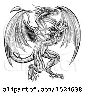 Clipart Of A Black And White Woodcut Dragon Royalty Free Vector Illustration