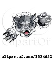 Clipart Of A Ferocious Gray Wolf Slashing Through A Wall With A Golf Ball Royalty Free Vector Illustration by AtStockIllustration