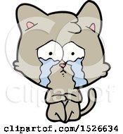 Crying Cat Cartoon