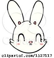 Cartoon Bunny Face