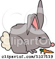Cartoon Annoyed Rabbit