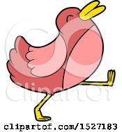 Funny Cartoon Bird Walking