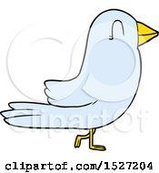 Cartoon Bird