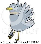Cartoon Flapping Wood Pigeon