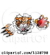 Clipart Of A Vicious Tiger Mascot Slashing Through A Wall With A Cricket Ball Royalty Free Vector Illustration