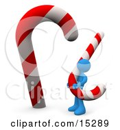 Blue Person Carrying A Huge Red And White Striped Peppermint Candycane And Looking Upwards At An Even Bigger One Clipart Illustration Image