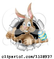 Brown Easter Bunny Rabbit Giving A Thumb Up And Holding An Egg While Emerging From A Hole
