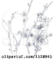 Poster, Art Print Of Cherry Blossom Branches Background