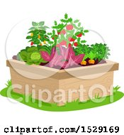 Clipart Of A Raised Garden Bed With Vegetable Plants Royalty Free Vector Illustration