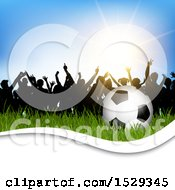 Silhouetted Crowd Of Soccer Fans With A Ball In Grass And White Wave