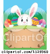 White Easter Bunny Rabbit Over A Blank Parchment Scroll