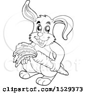 Black And White Bunny Rabbit Holding A Carrot