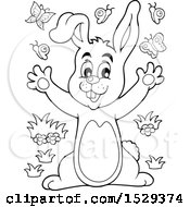 Black And White Bunny Rabbit With Butterflies