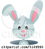 Clipart Of A Gray Bunny Rabbit Emerging From A Hole Royalty Free Vector Illustration