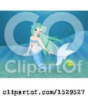 Poster, Art Print Of Mermaid And Fish Underwater