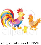 Chicken Family With A Chick Hen And Rooster