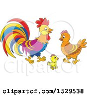 Clipart Of A Chicken Family With A Cute Chick Hen And Rooster Royalty Free Vector Illustration