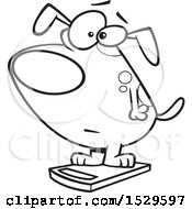 Cartoon Outline Obese Dog On A Scale
