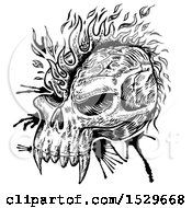Clipart Of A Black And White Sketched Skull With A Flame Mohawk Royalty Free Vector Illustration