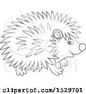 Black And White Cute Hedgehog