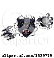 Clipart Of A Black Panther Mascot Shredding Through A Wall With A Golf Ball Royalty Free Vector Illustration by AtStockIllustration