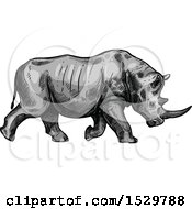 Clipart Of A Sketched Rhino Charging Royalty Free Vector Illustration