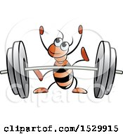 Red Ant Ready To Lift A Barbell