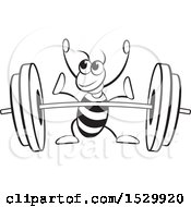 Black And White Ant Ready To Lift A Barbell