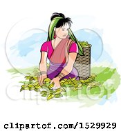 Clipart Of A Sri Lankan Woman Plucking Tea Leaves Royalty Free Vector Illustration