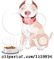 Happy Tan And White Pit Bull Dog Sitting By A Pet Food Bowl