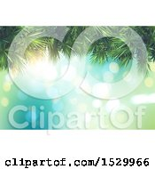 3d Palm Branches Border Over A Background Of Flares