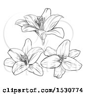 Poster, Art Print Of Black And White Lily Flowers