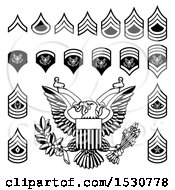 Black And White American Military Army Officer Rank Insignia Badges